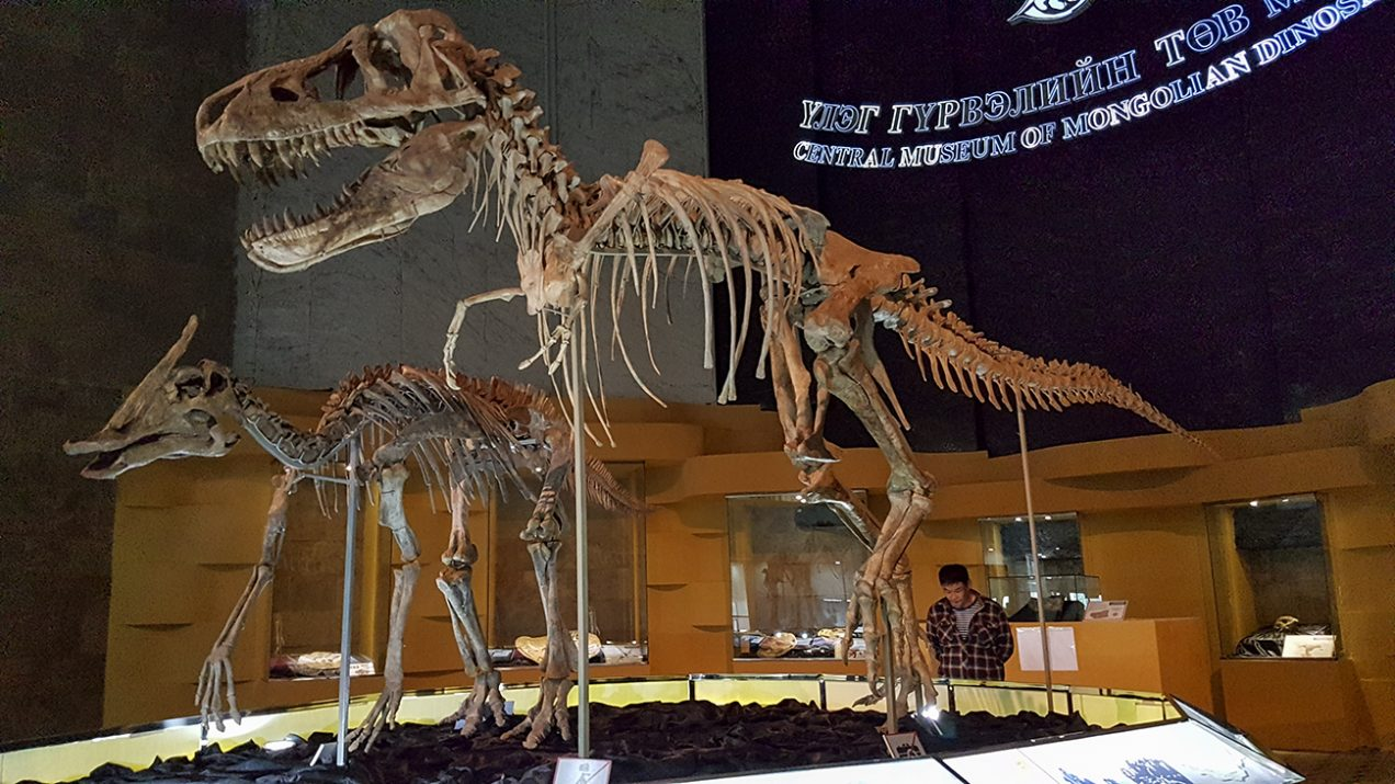 Central Museum of Dinosaurs