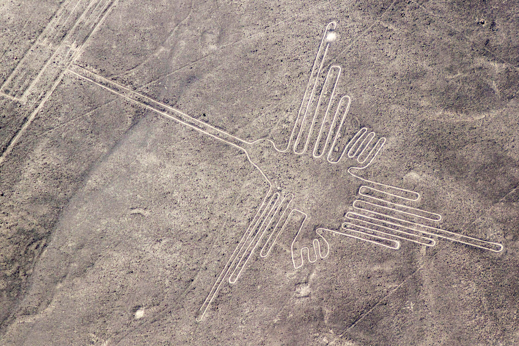 Famous Nazaca lines in Peru - here you can see the hummingbird
